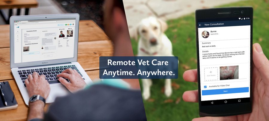TeleVet app for remote vet care